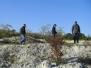 Mergelgrube 2013